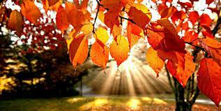 Podzimní prázdniny              26. - 30. 10. 2020